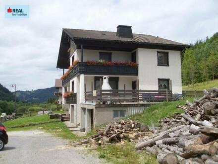 Versteigerung eines großen Einfamilienhauses im Halltal bei Mariazell