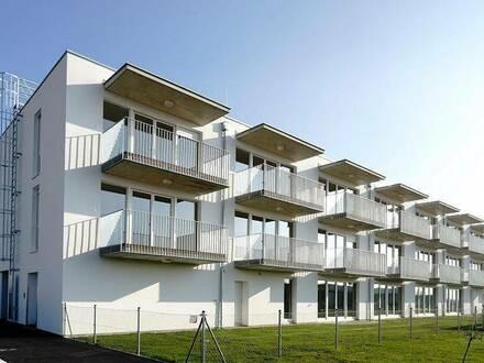 Zistersdorf I/2, geförderte Mietwohnung mit Eigentumsoption, Top 2/3, 1. OG, 1000/11160/1203