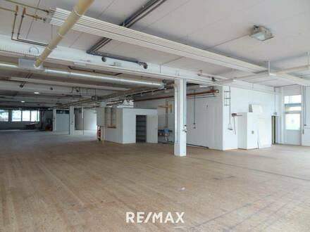 Vielseitig nutzbare Gewerbeimmobilie mit zwei Hallen (einzeln anmietbar), Bürotrakt und Freiflächen zu mieten