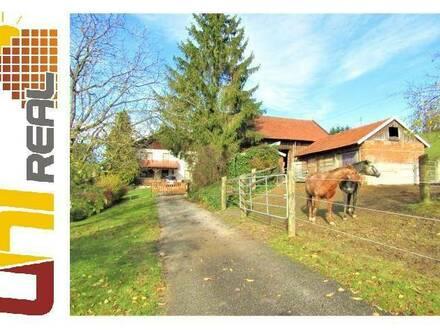 - UNI-Real -*VIDEOBESICHTIGUNG* Für Pferdeliebhaber!