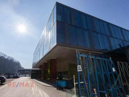 Sehenswerter Firmenstandort - 9000 m² - Büro, Produktion, Lager