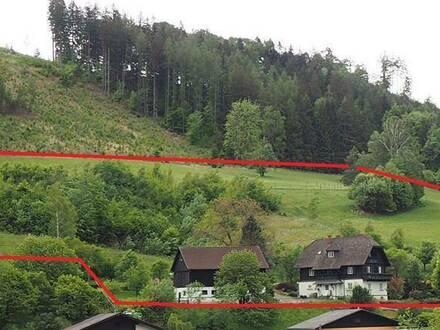 Bauernsacherl mit 3000 m² Baulandreserve