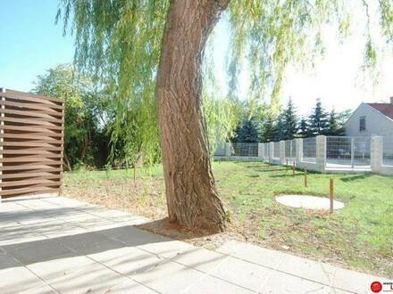 Ebergassing - sonnige Gartenwohnung in ruhiger Lage