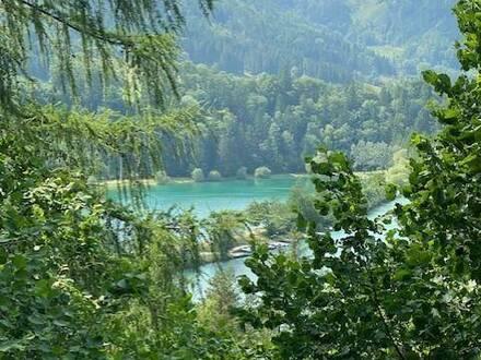 Traumhaftes Anwesen in der Pyhrn - Priel Region!