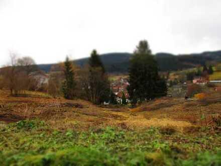 Lenzkirch! Tolles Baugrundstück mit schöner Aussicht - Teilbar, zentrumsnah, sonnig!