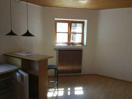 Vollständig renovierte Wohnung mit einem Zimmer und Einbauküche in Mainz
