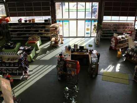 Helle Verkaufs- oder Werkstattfläche mit Stellplätzen