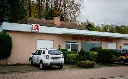 Ehemalige Elsenz-Apotheke, in zentraler Lage mit Parkplätze zu vermieten!