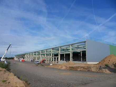 PROJEKTIERTE HALLENFLÄCHEN (AB 3.500 - 25.000 m²) PROVISIONSFREI ZU VERMIETEN
