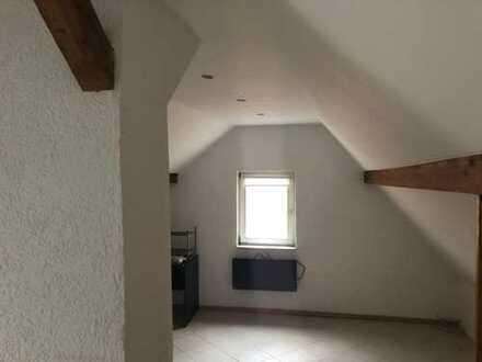 Dielheim, 2 möbilierte Zimmer im großen EFH günstig zu vermieten