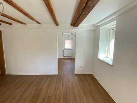 Vollständig renovierte 2-Raum-Wohnung in Rottenburg am Neckar