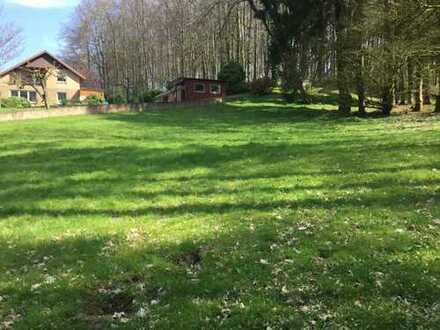 Schönes Grundstück in Bissendorf-Holte