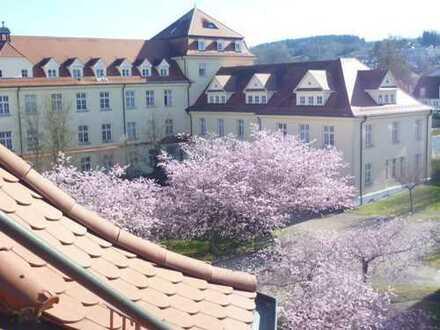 Sanierte 2-Zimmer-DG-Wohnung mit Einbauküche in Weingarten