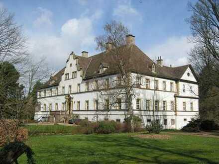 Wohnung im Schloss, großzügig, offener Kamin, traumhafter Blick