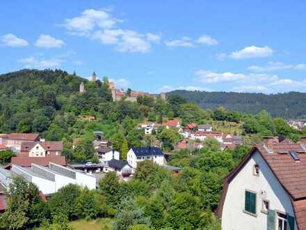 Nahe Heidelberg. Eine tolle Kapitalanlage im wunderschönen Neckartal.