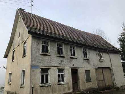 Großes Bauernhaus im Außenbereich - sofort verfügbar