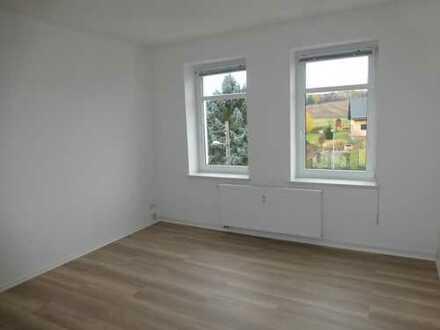 NEUSANIERTE 3-Raum DG-Wohnung mit Gartenanteil in Rödlitz (Erstbezug)
