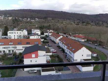 Über den Dächern von Leimen