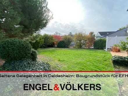 Seltene Gelegenheit in Deidesheim: Baugrundstück für Einfamilienhaus!