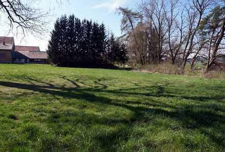 Unterkammlach: Großes Grundstück in Ortsmitte zur Bebauung