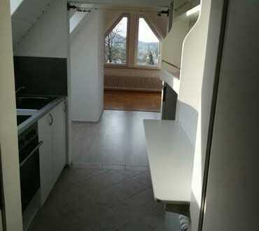 Helle, ruhige 1-Zi-DG -Wohnung mit neuer seperater Küche