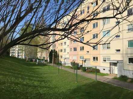 Ruhig & grün in Chemnitzer Randlage! Singlewohnung! Ohne Kaution!
