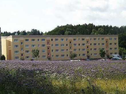 Attraktive 4-Zimmerwohnung am Kurpark Warmbad
