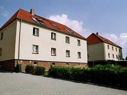 Schöne, gemütliche 4-Raumwohnung in Reinsdorf OT Friedrichsgrün