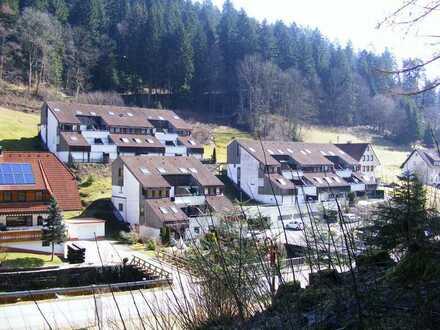 Sonnige 2 Zimmer-Wohnung mit Möbelierung im Kurort Bad Rippoldsau