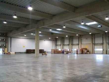 """""""BAUMÜLLER & CO."""" 3.500 qm Hallenlager *Sofort Verfügbar*"""