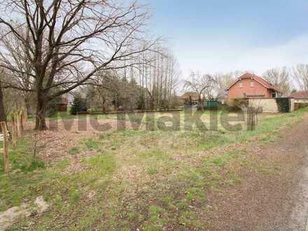 Nahe Cottbus: Teilerschlossenes Grundstück in idyllischer Lage von Dissen-Striesow