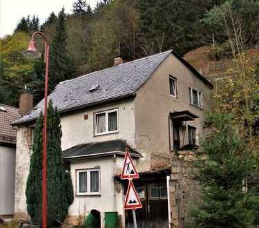 Leerstehendes Einfamilienhaus mit Garage und bewaldeten Hanggrundstück