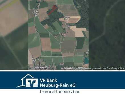 Bieterverfahren über forstwirtschaftliche Grundstücke