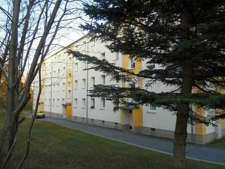 Sanierte 1-Zimmerwohnung mit Balkon!
