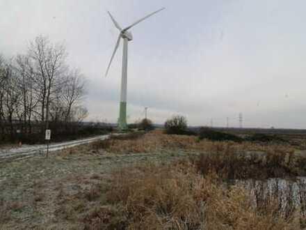 Landwirtschaftliche Fläche Agathenburg