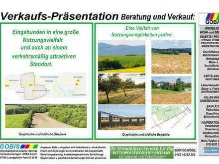 Landwirtschaftliche Grundstücke Worms Horchheim ANLAGE für VERPACHTUNG Metropolregion RN