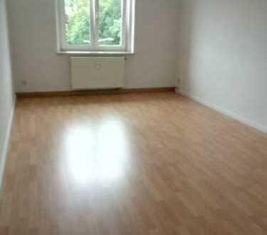 !! 1 MONAT KALTMIETFREI !! Kleine 1 Zimmer Wohnung - neu renoviert - sucht Nachmieter
