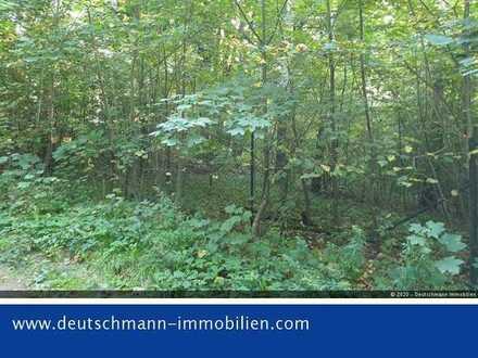 DEUTSCHMANN IMMOBILIEN ***** ivd - Breites Erholungsgrundstück mit Baumbestand in Biesenthal!