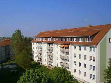 Schicke 3 Raum Wohnung sucht Bewohner :-)