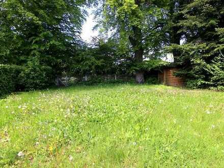 Gauting/STA: Idyllisch Wohnen direkt am Waldrand: Modernes Stadthaus (REH) mit Garten