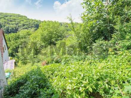 Großes Grundstück in idyllischer Lage ca. 30 Minuten von Nürnberg und Erlangen entfernt