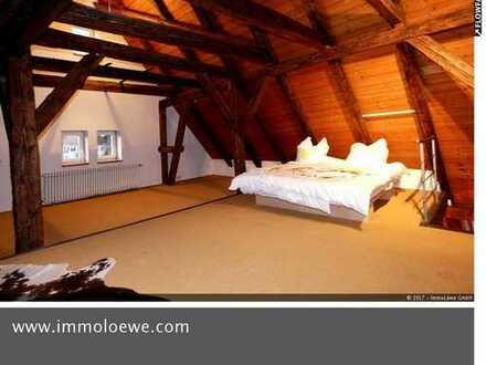 *AB 01.04.2019 BEZIEHBAR* Traumhafte Maisionette Wohnung mit Schlossblick