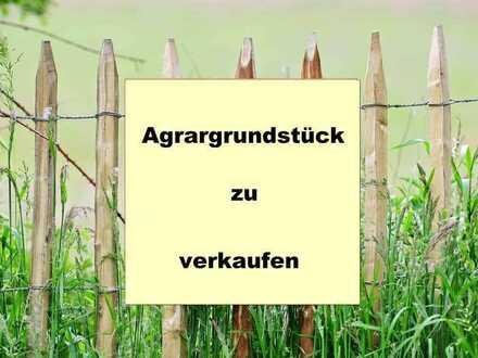 Agrargrundstück in der Nähe von 86381 Hohenraunau