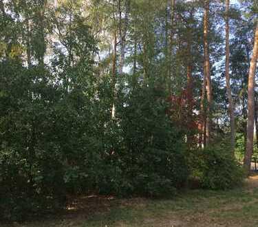 Schön gelegenes Baugrundstück mit Baumbestand in ruhiger, naturnaher Wohnlage