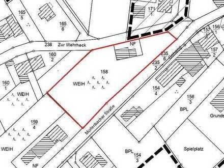 Großes, erschlossenes und sonniges Baugrundstück in 54570 Salm, Mürlenbacher Straße, Flurstück 158