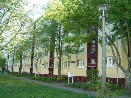 schöne 3 Raum Wohnung