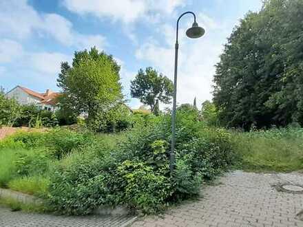 Traumgrundstück wartet auf Traumhaus - 1085 QM Baugrund mit phantastischer Fernsicht in Sörgenloch