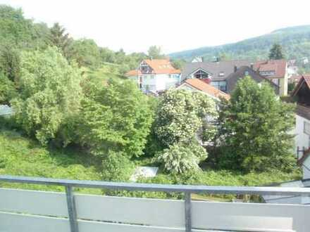 Teilmöblierte-helle 2-Zimmer Wohnung in Esslingen - Wäldenbronn