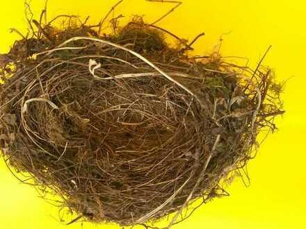 """Schwabing-Nest: """"HAUS IM HAUS"""" - mit Garten in Bestlage"""