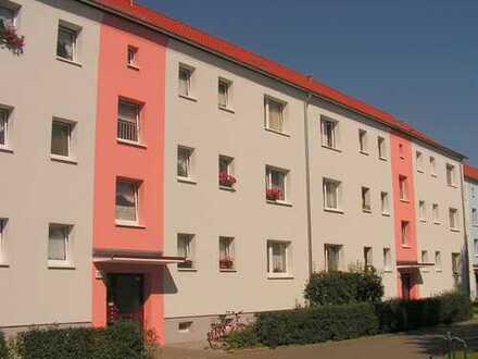 4-Raum-Wohnung in ruhiger Lage